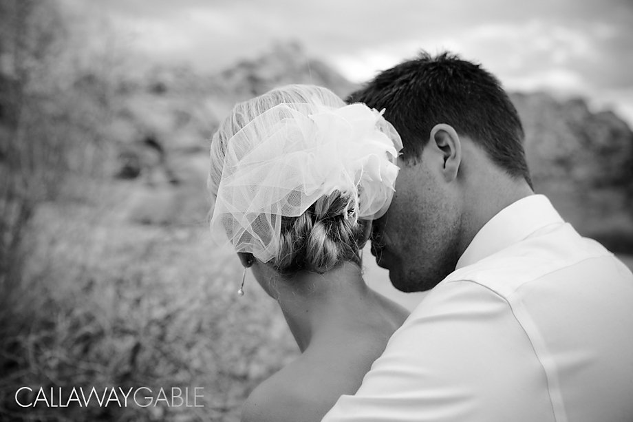 Palm-Springs-Wedding-Photo-5521-Edit