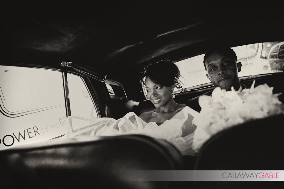 Cicada-Wedding-Photo-1521
