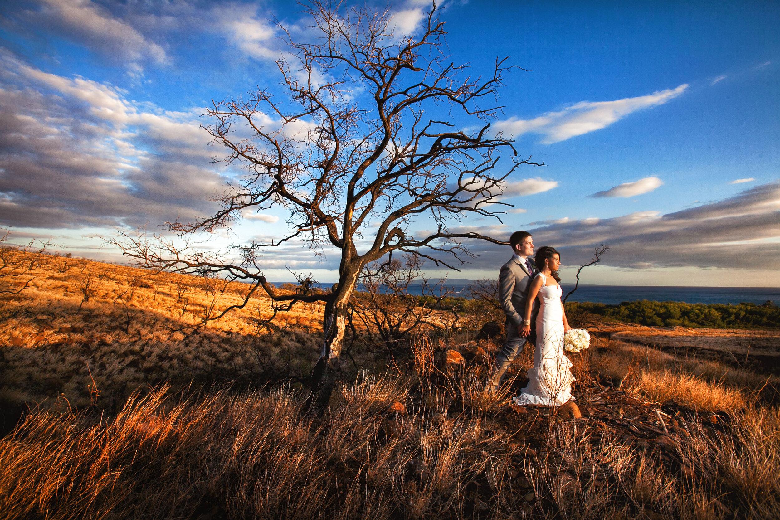 olowalu-plantation-house-wedding-maui.jpg