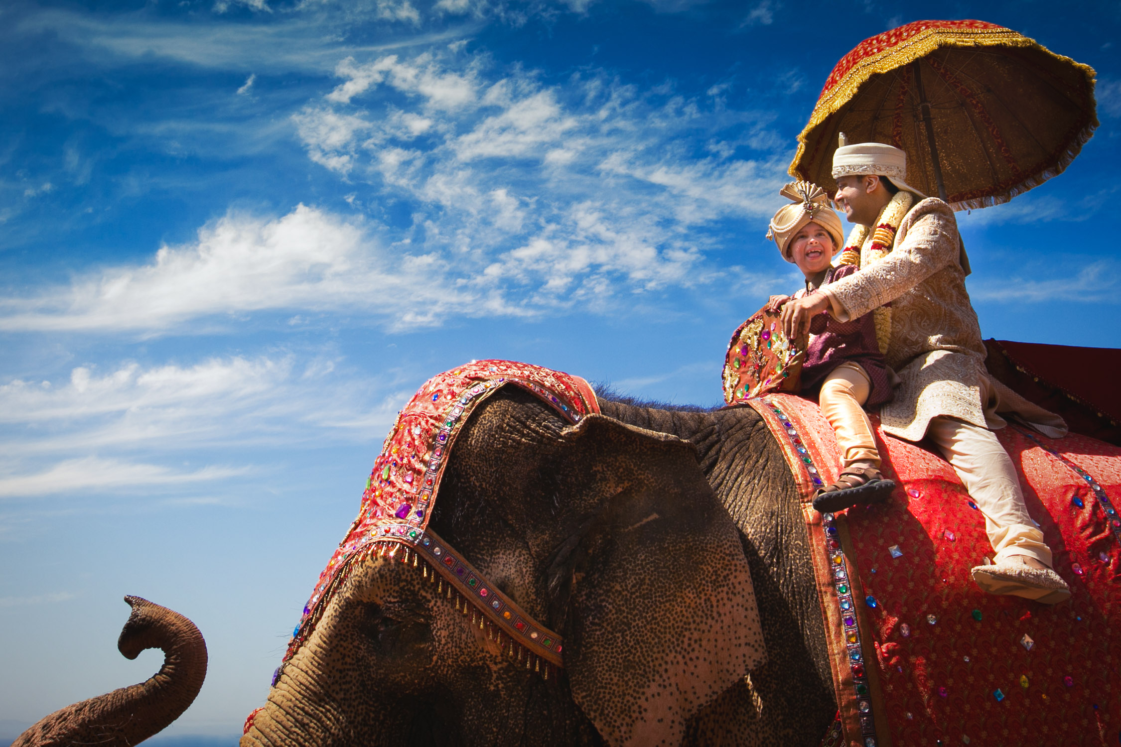 Pelican Hill Indian Wedding Photo of Groom on Elephant