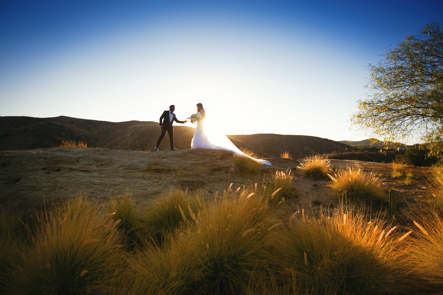 Hummingbird Nest Ranch Wedding - Together In The Sun
