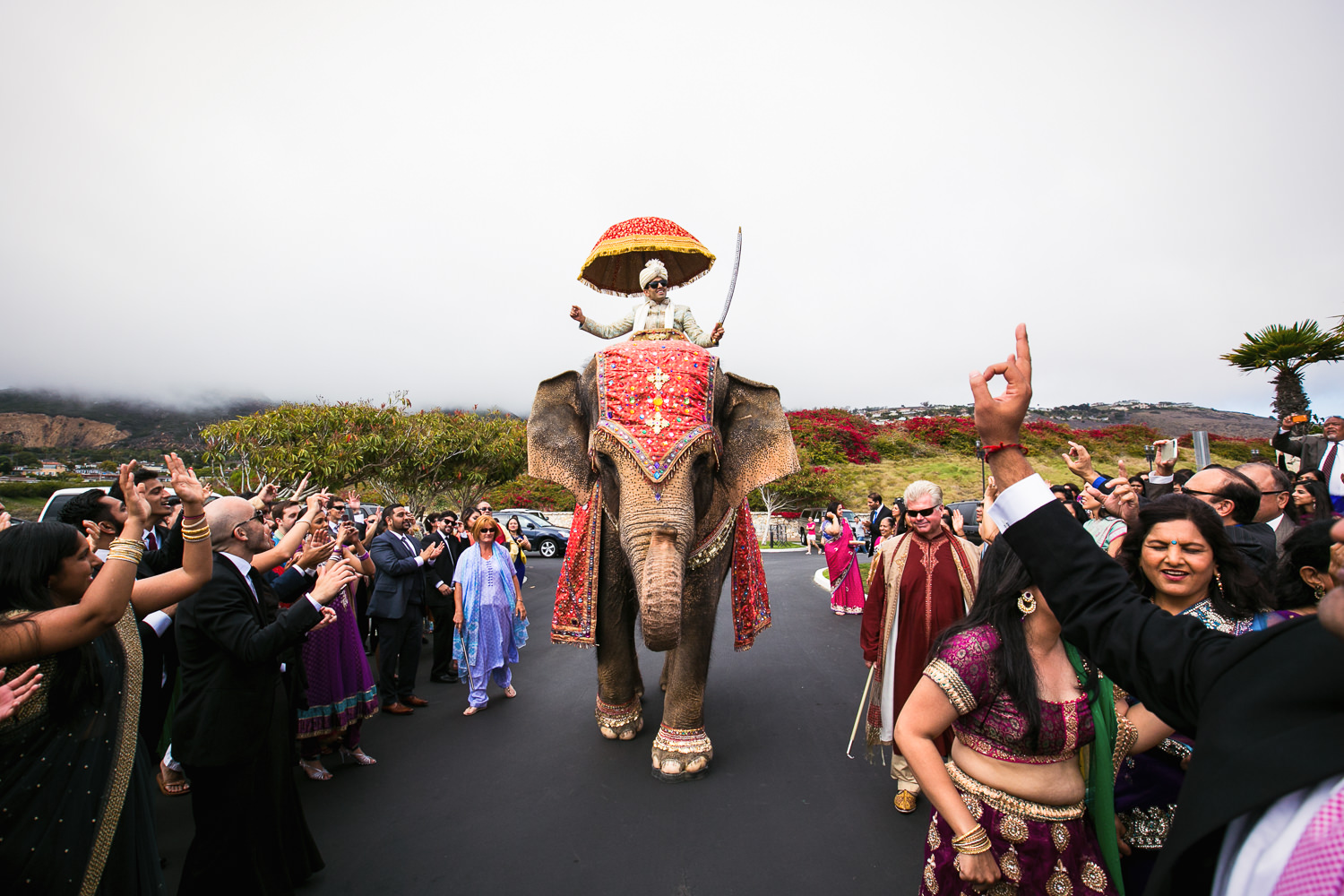 South Asian Trump National Golf Club Wedding - Groom Riding an Elephant