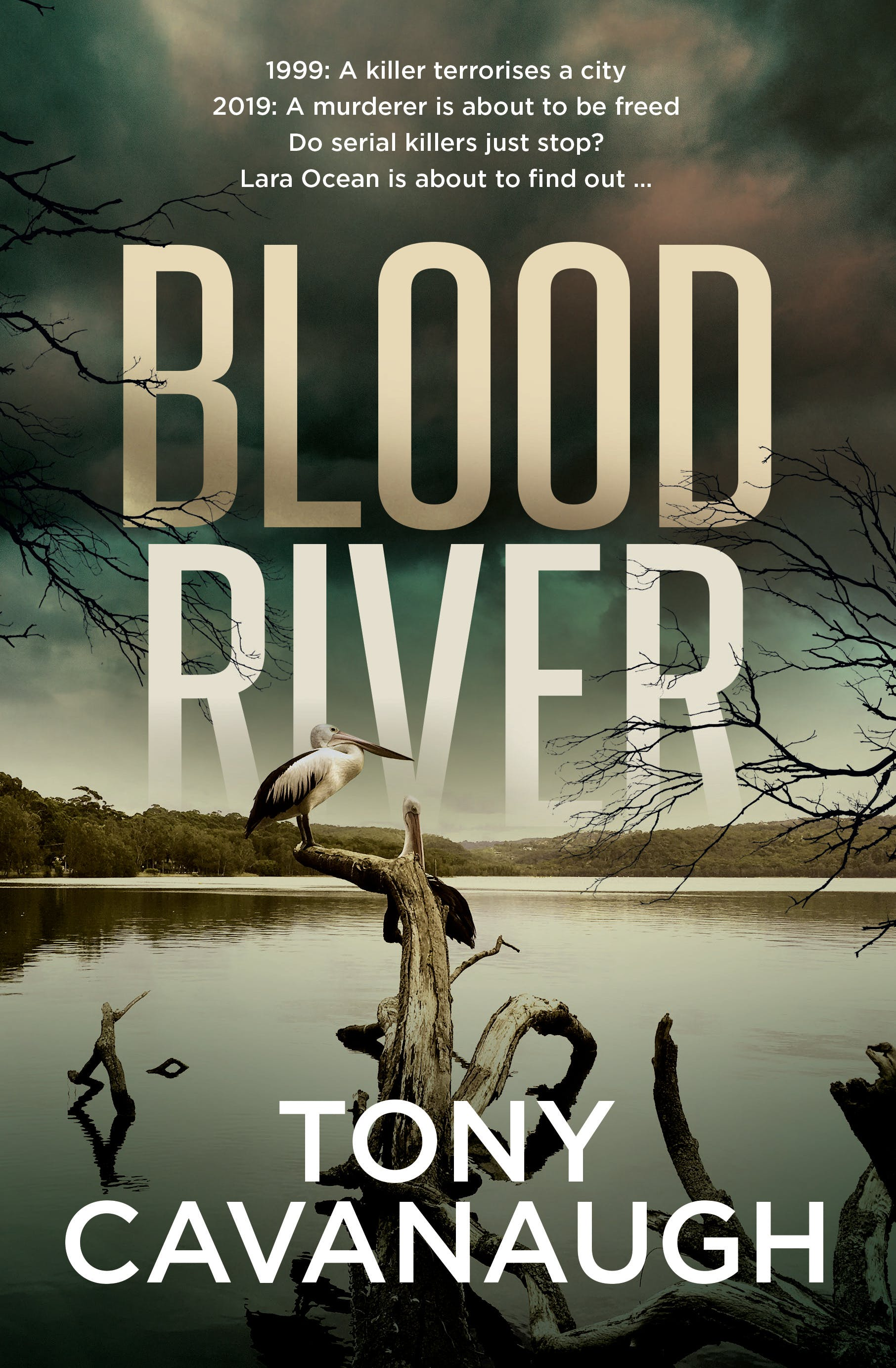 Blood River – the highly ancipated new novel from Tony Cavanaugh – is out now! Get your copy. -