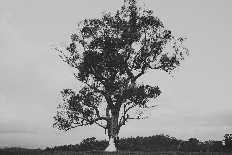 Melbourne_Wedding_Photography020.JPG