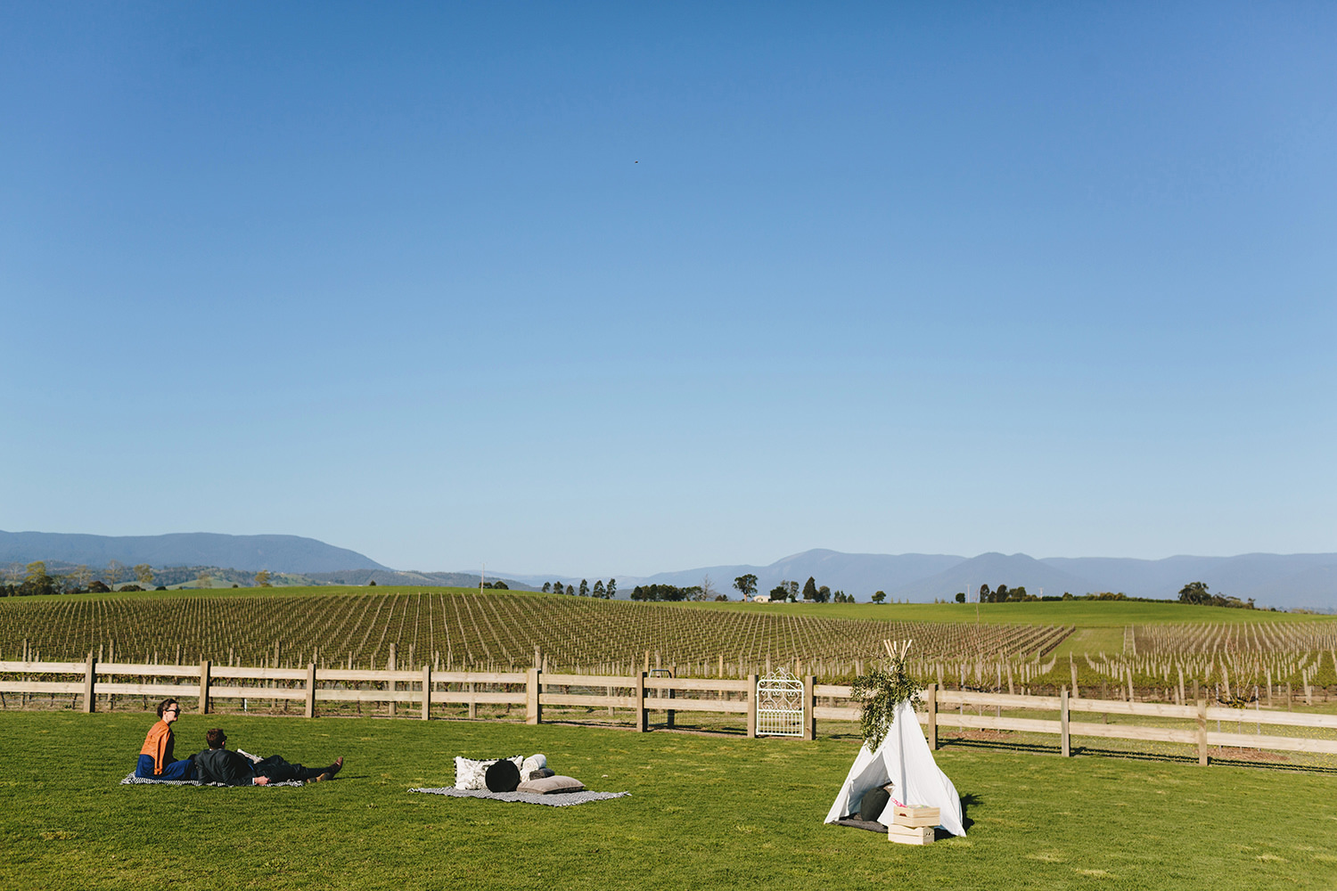 Melbourne_Winery_Wedding_Chris_Merrily058.JPG