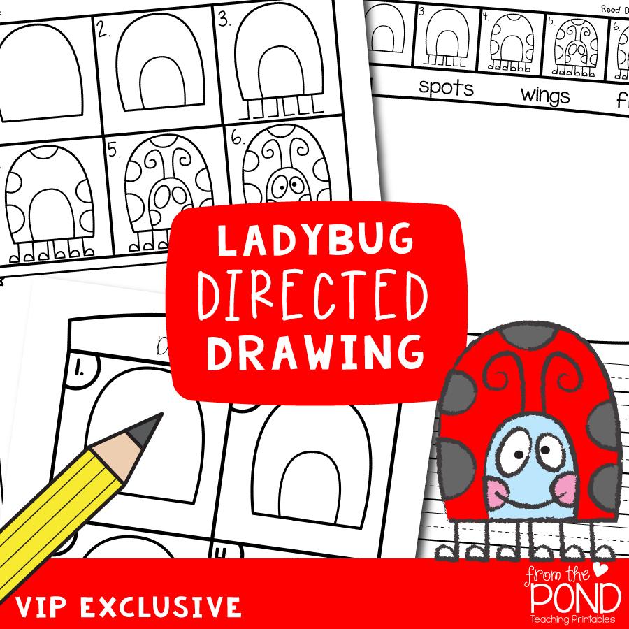 Ladybug Directed Drawing