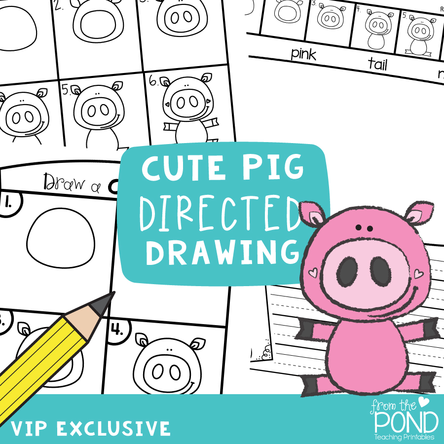 Spring Pig Directed Drawing