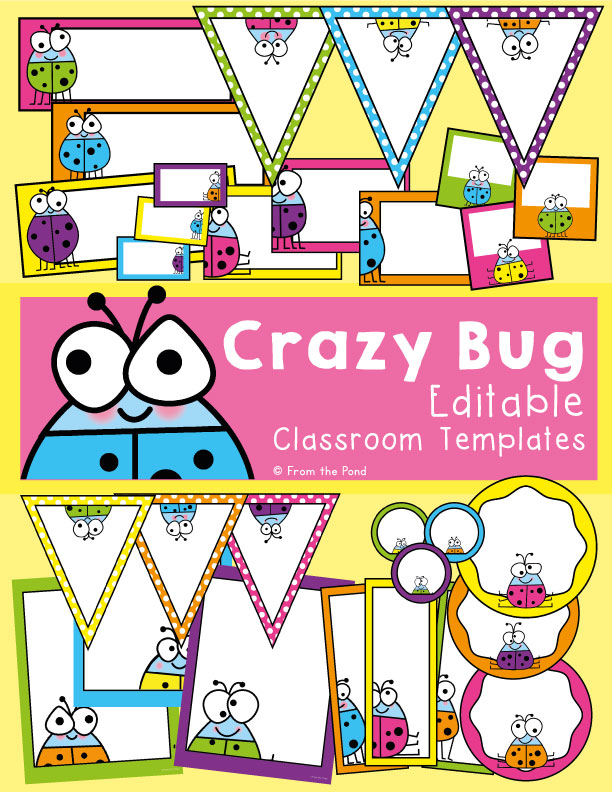 Crazy Bug Classroom Decor