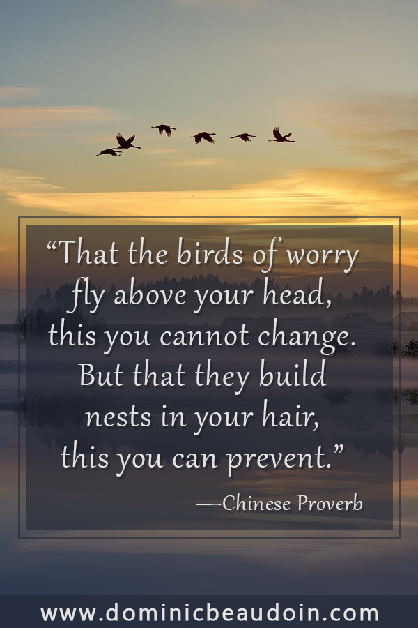 """That the birds of worry fly above your head,this you cannot change. But that they build nests in your hair,this you can prevent."" —Chinese Proverb"