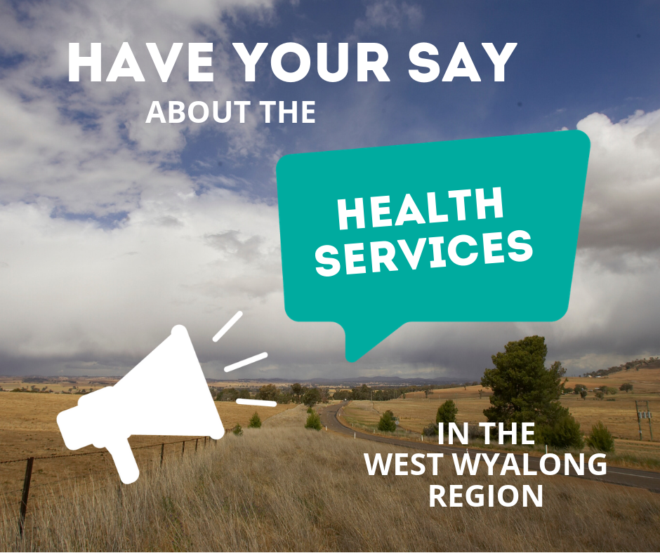 HAVE YOUR SAY.png