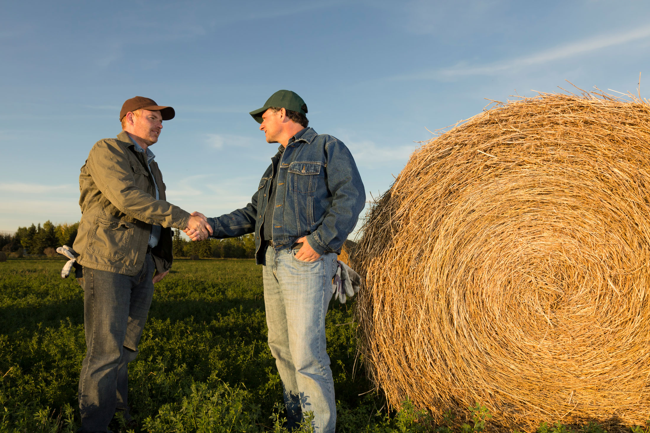 iStock-184996867---farmers-shaking-hands-in-front-of-hay-bale_web.jpg