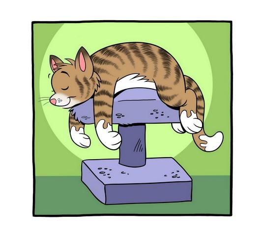 Low Key Cat
