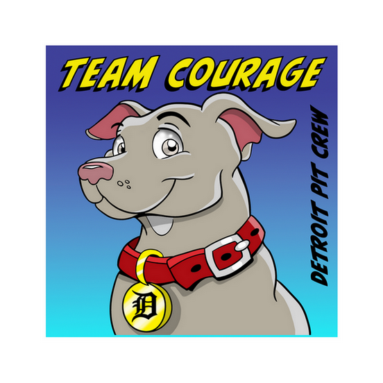Team Courage sticker