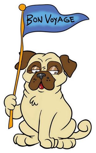 Bon Voyage pug