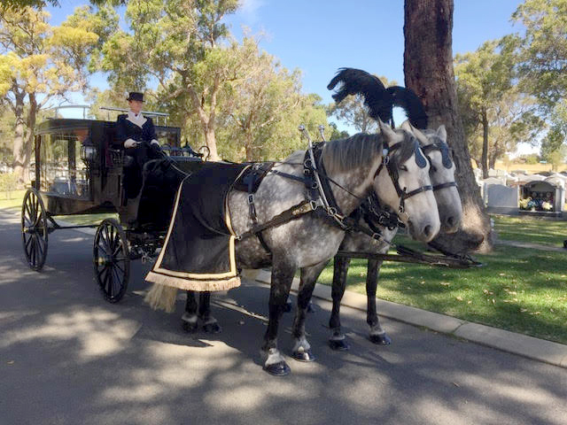 Hearse  with Percherons - Funerals.jpg