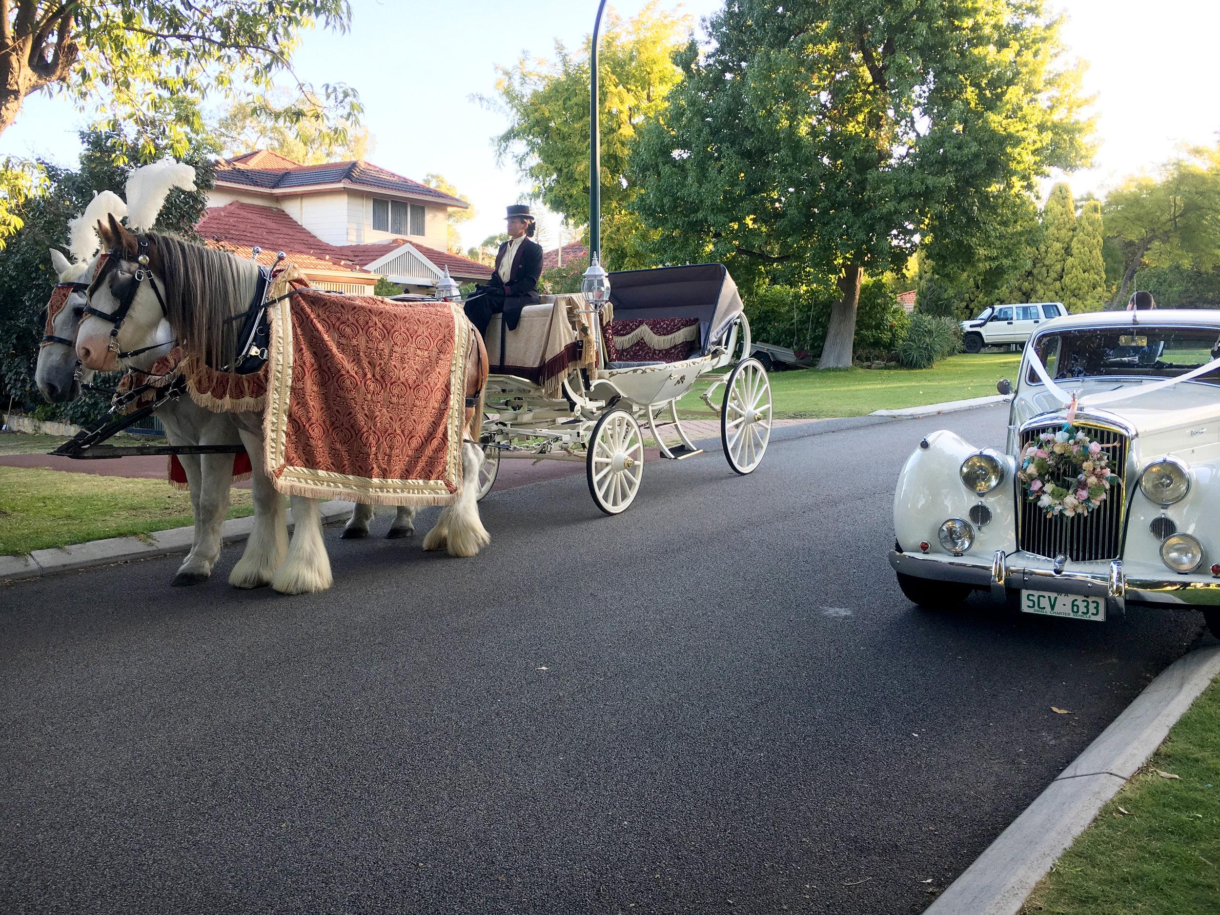 Sikh Wedding carriage.JPG