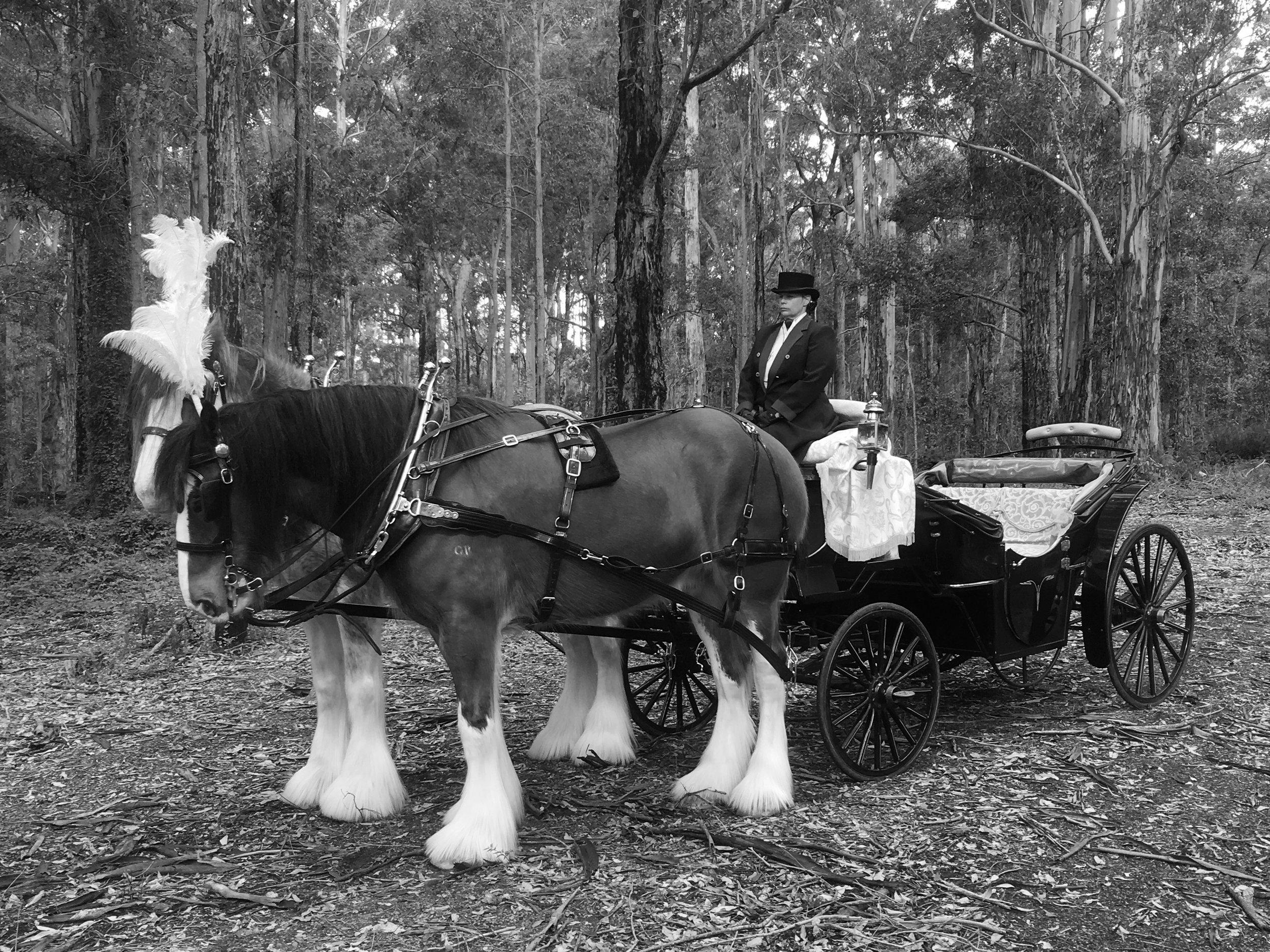 Landau - Funeral black and white.jpg
