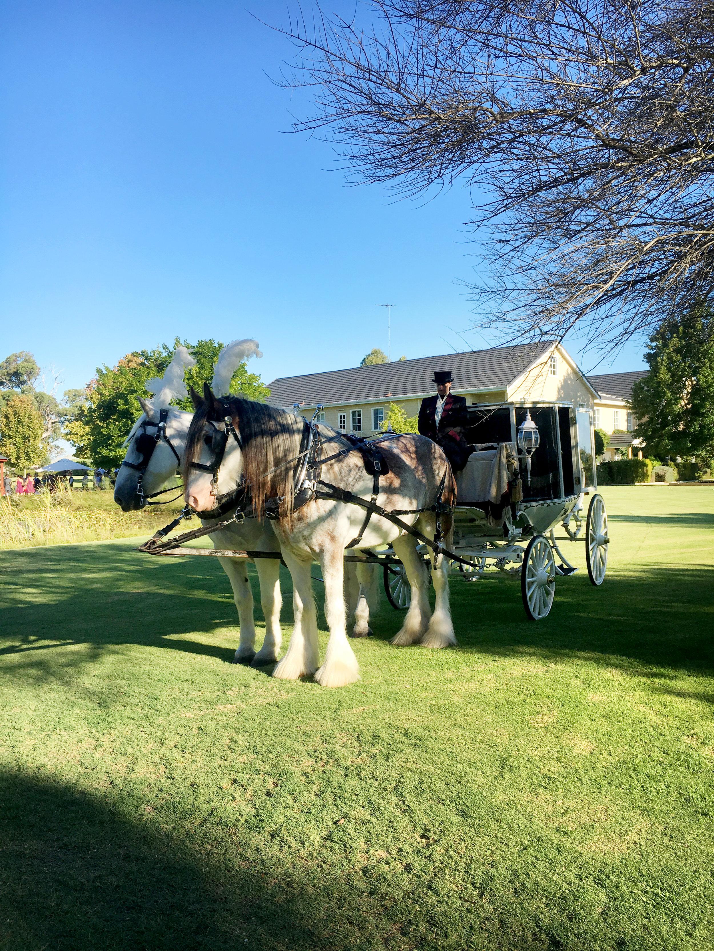 JAck and Beacon wedding.JPG