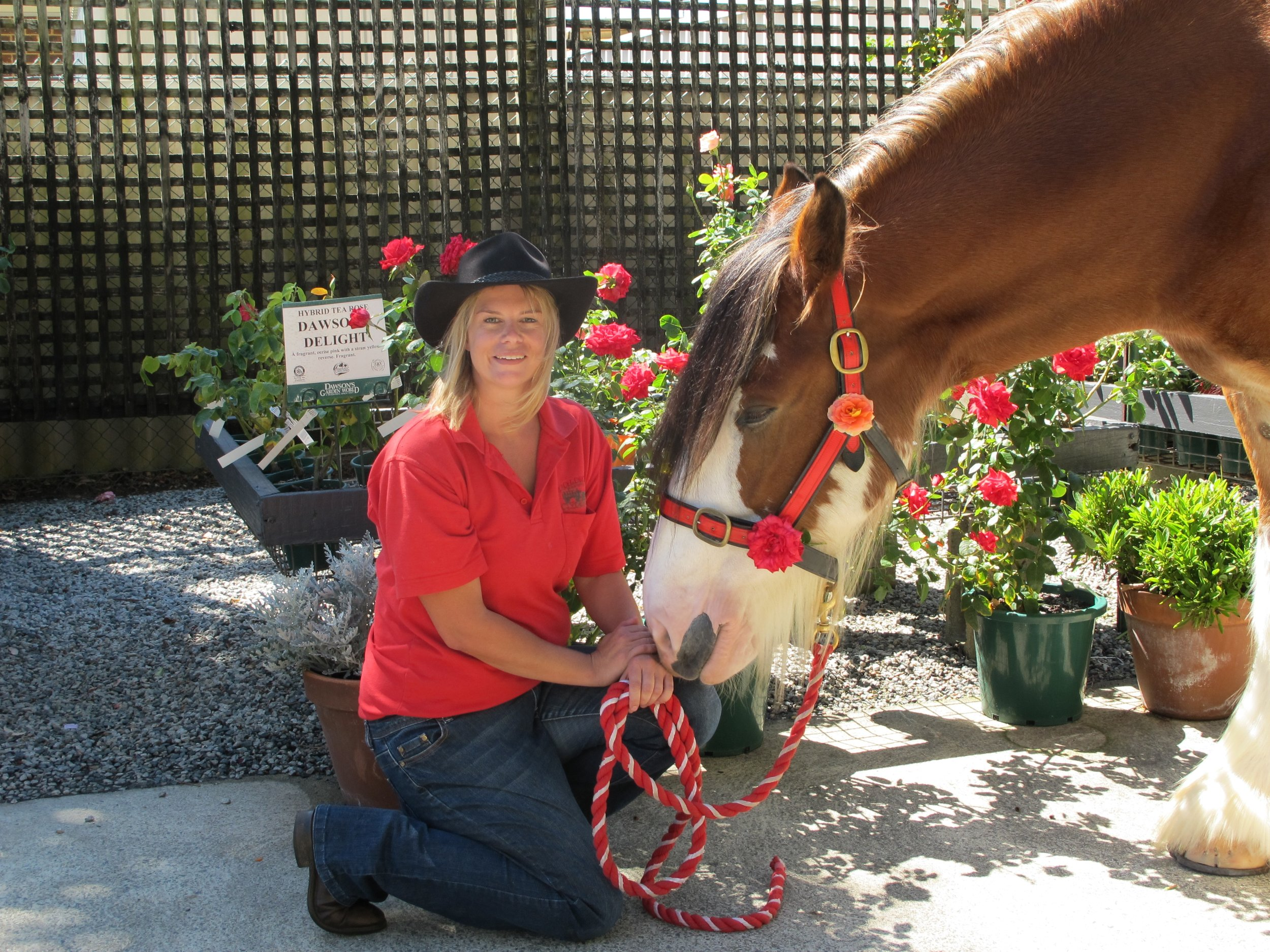 Garden week Horses 131 - Promotions.JPG