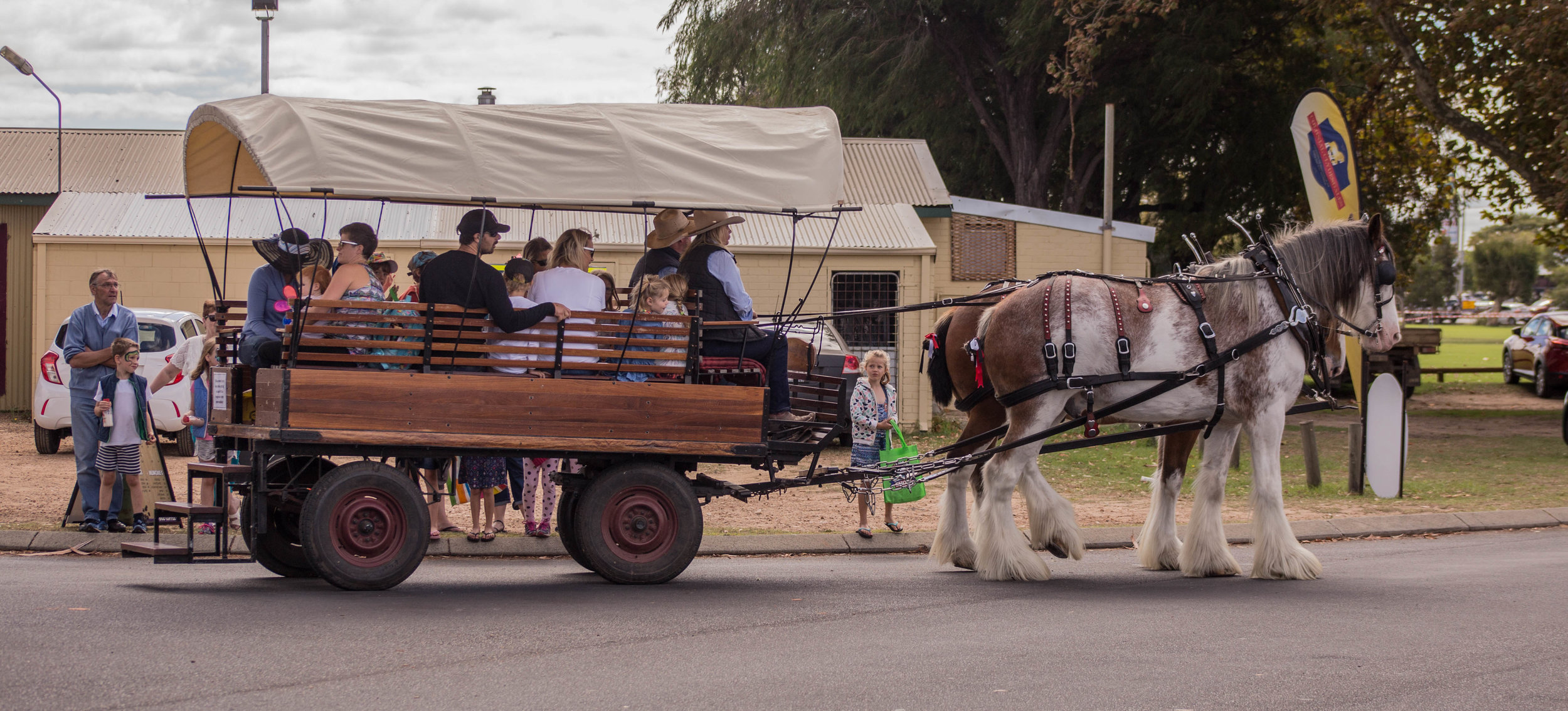 Wagon RIdes - Wagon Rides.jpg