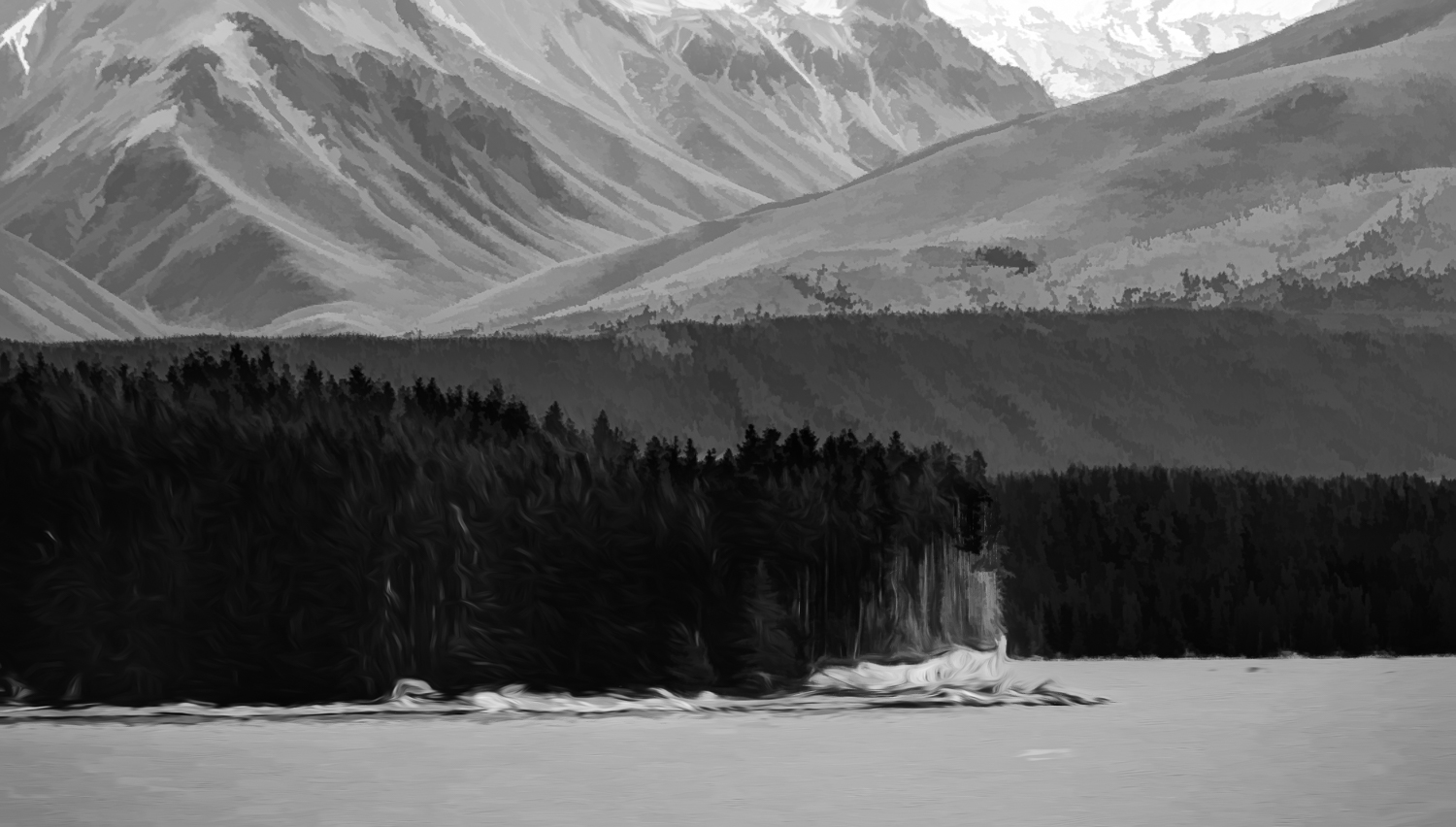 """ Black & White painting""    Queenstown, New Zealand."