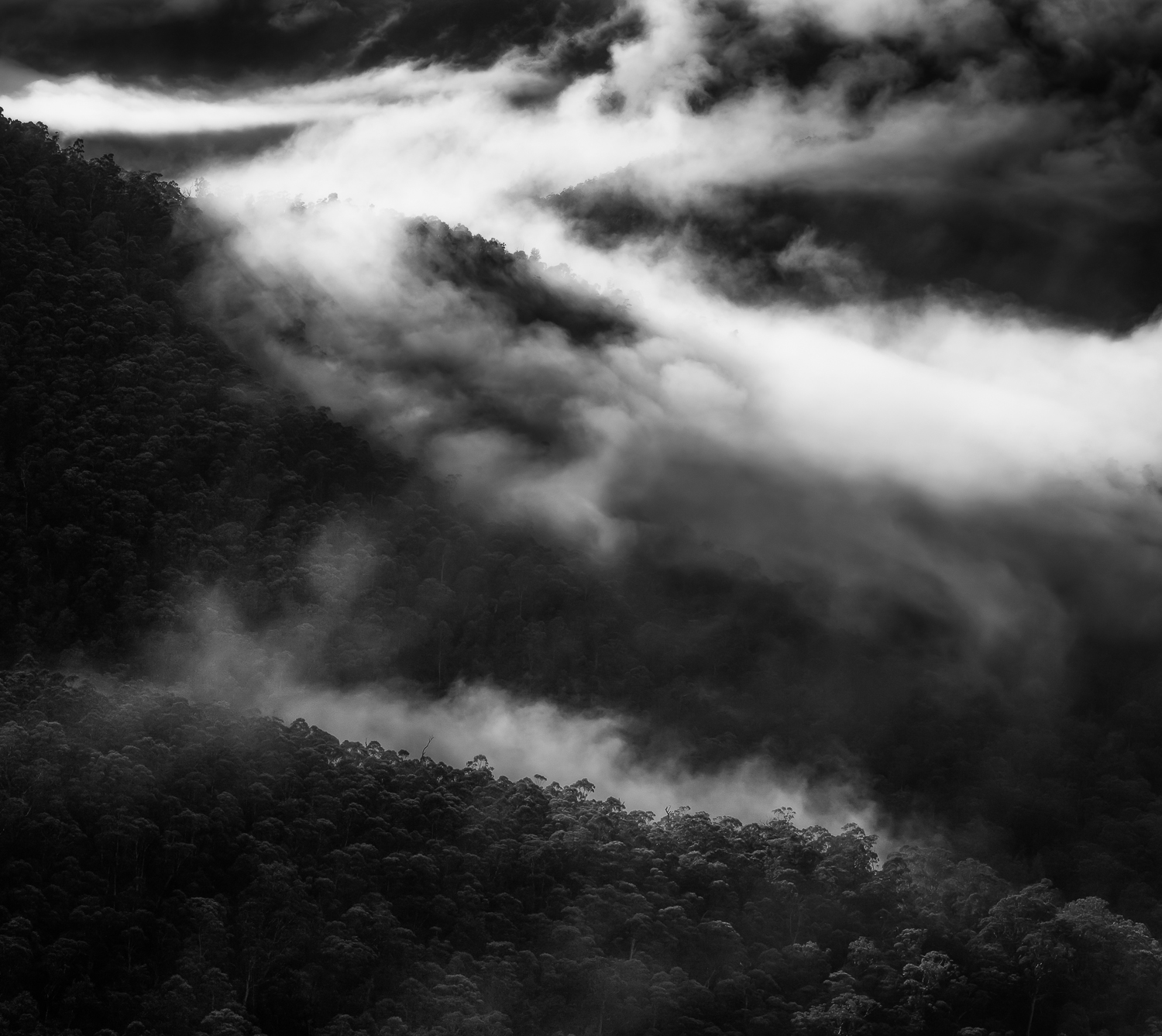 """Fog over the Jamison Valley""    Sydney, Blue Mountains Australia."