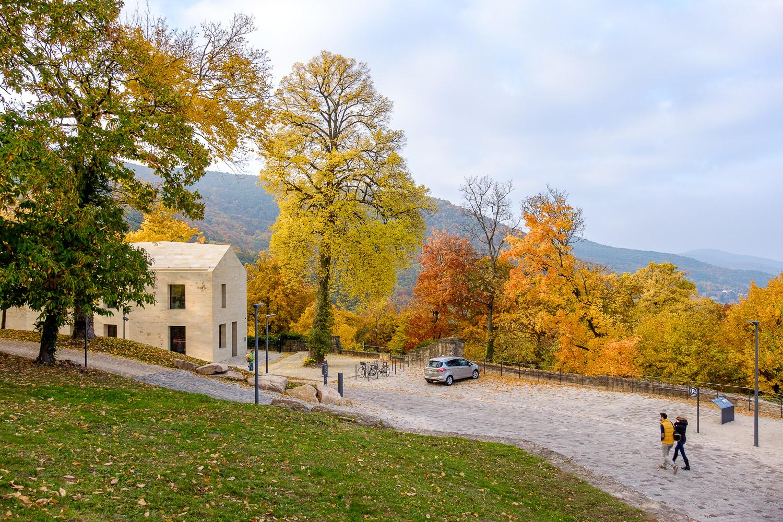 Schloss_Hambach_Neustadt_01_Nikolai_Benner.jpg
