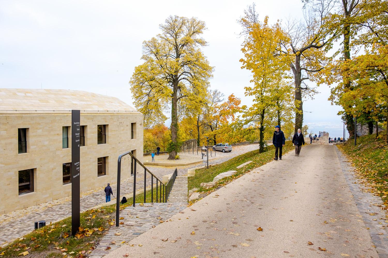 Schloss_Hambach_Neustadt_04_Nikolai_Benner.jpg