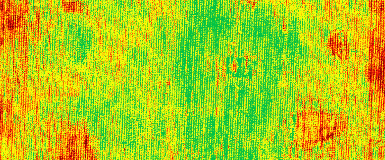 sequoiaplus-result.jpg