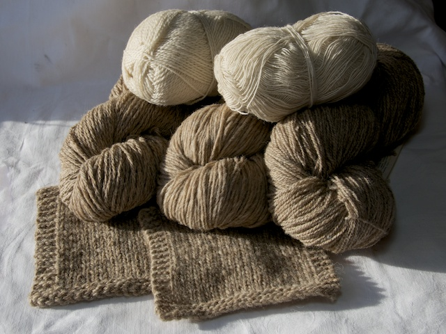 Fernhill Fleece and Fibre Naturally Coloured Wool Yarn.jpg
