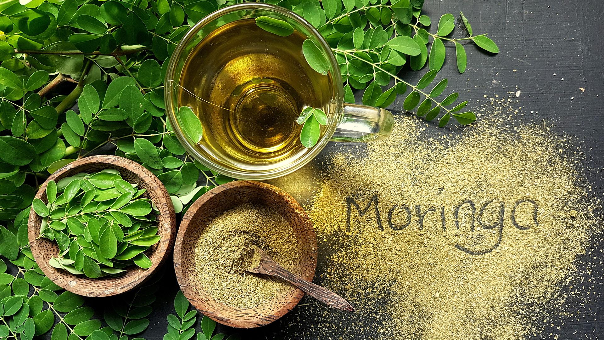 Moringa-superfood-why-is-moringa-good-for-health.jpg