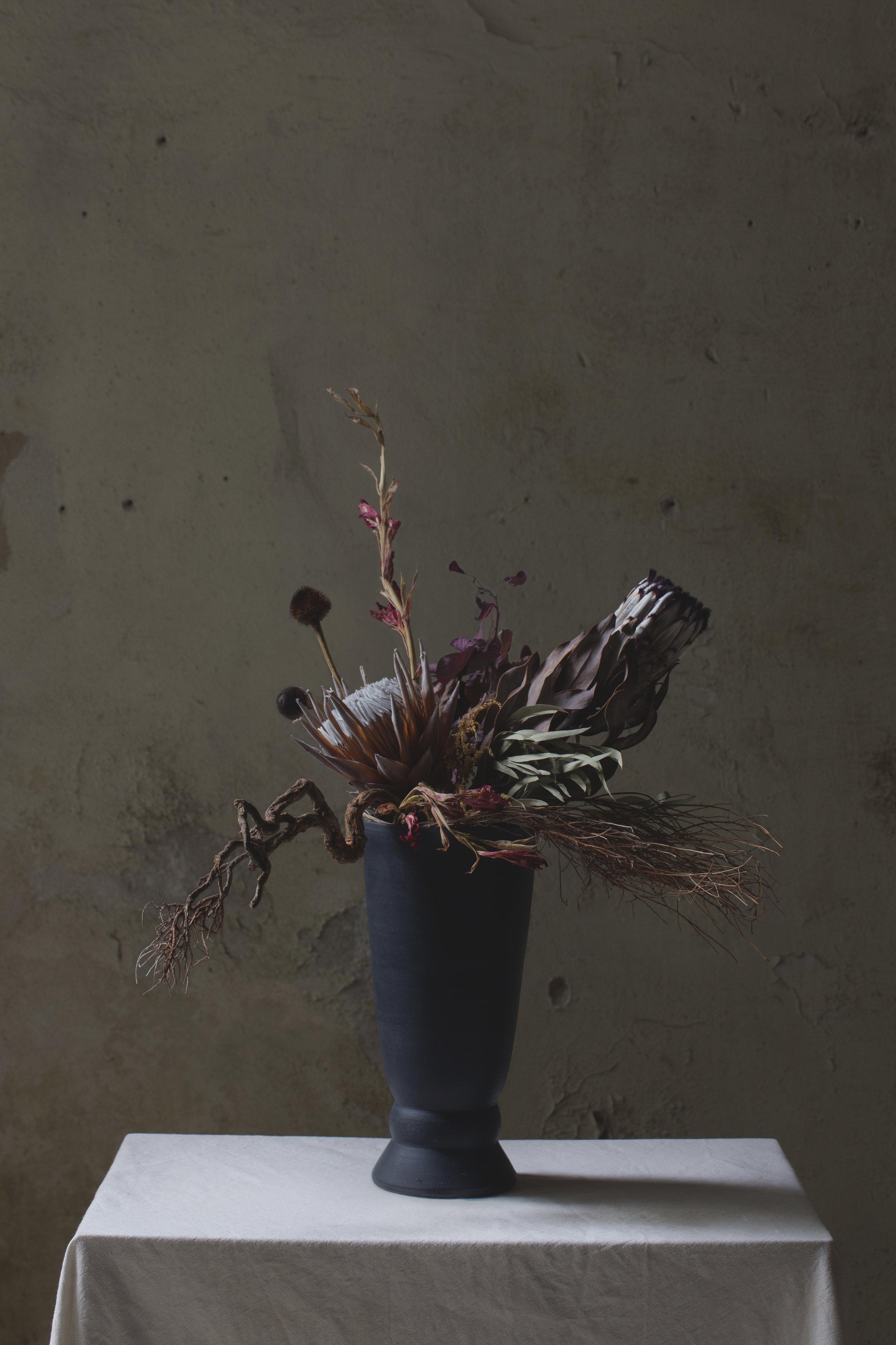 IRENE_Plant_06.jpg