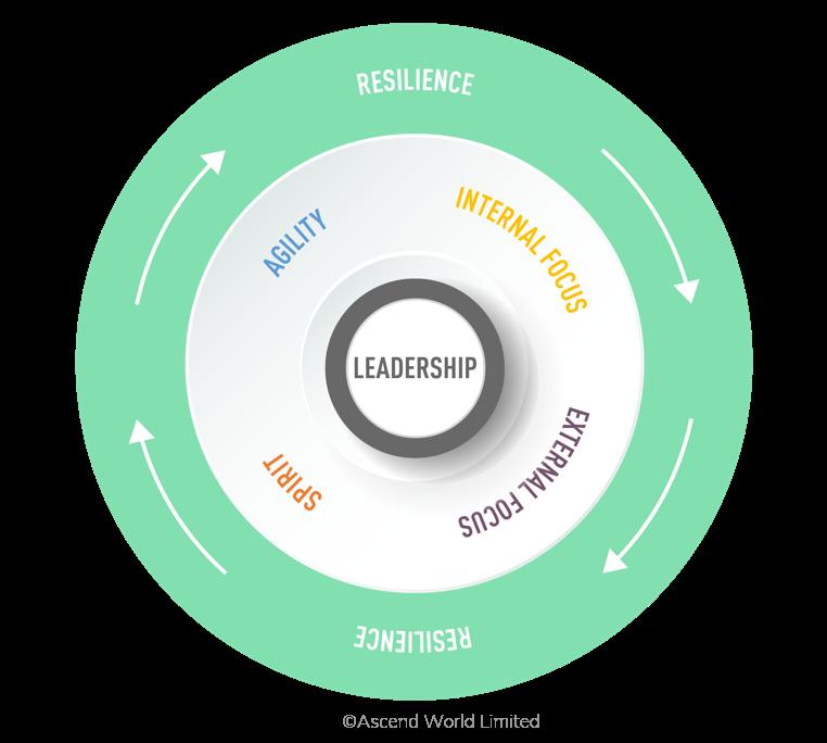 Ascend Successful Teams Model