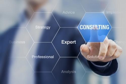TRaining/ consulting -