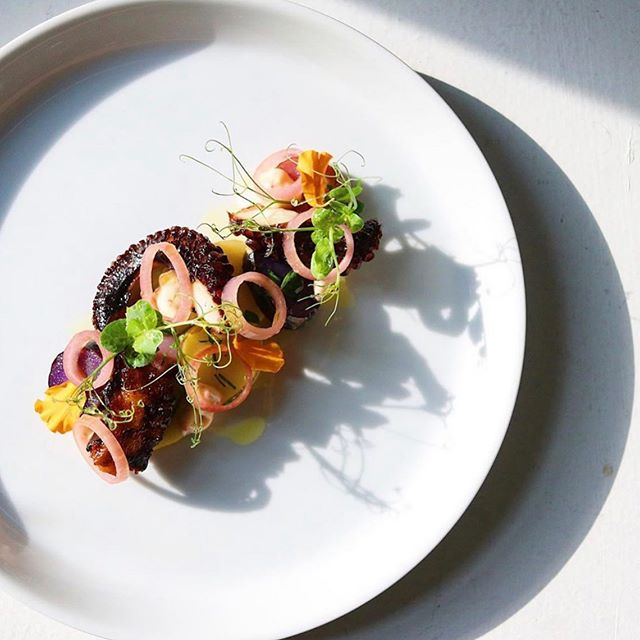 "A few seats left for tomorrow's collab dinner w/ @14seatsatl y'all don't want to miss this one! 6courses, snacks, wine, & something special to take home!😉 Tickets available on @tockhq or through ""reserve"" link under bio  Pictured: Octopus, confit fingerlings, chili aioli, & pickled shallots"