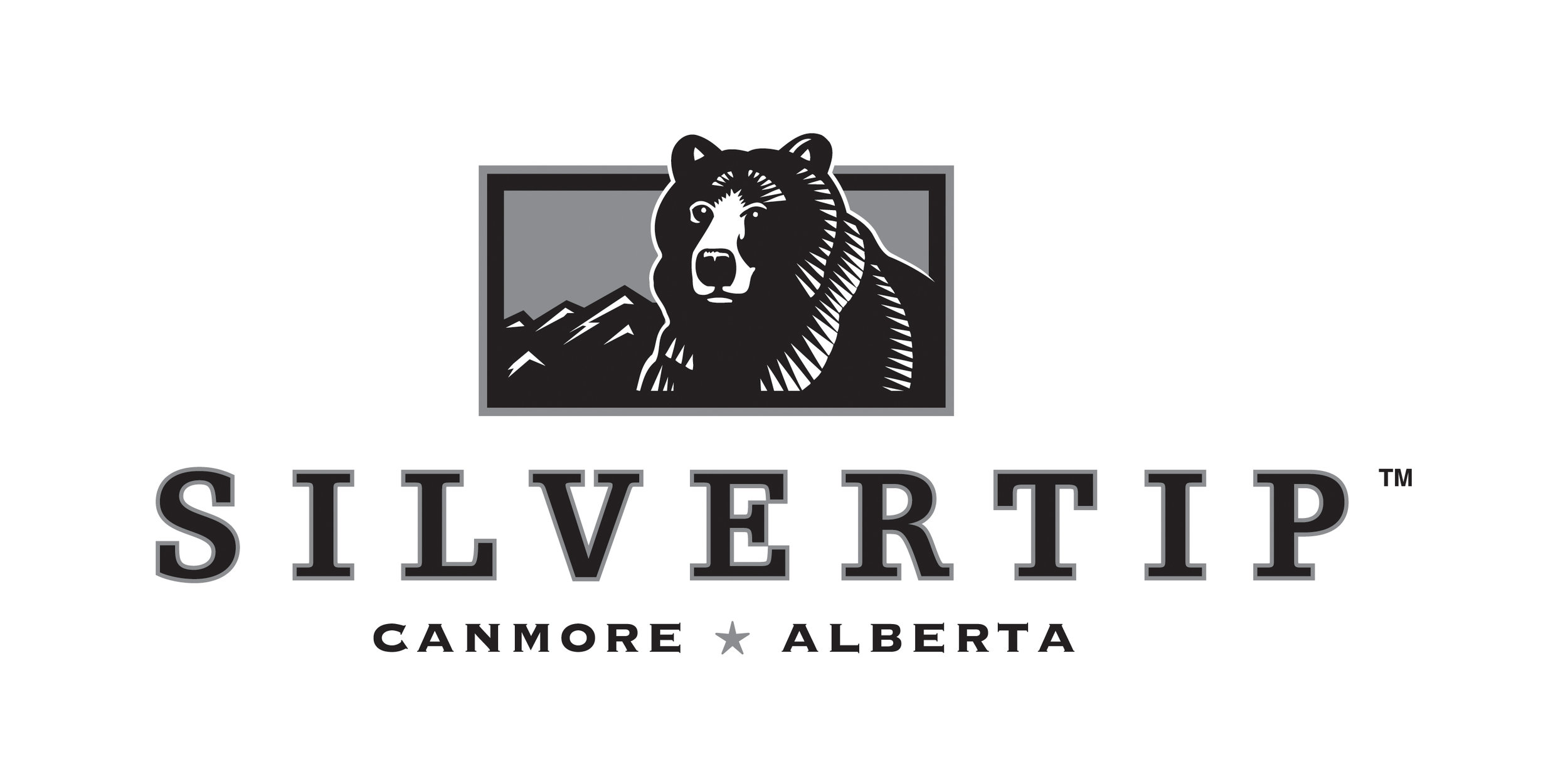 Silvertip Logo with grey background-2014-DW.jpg