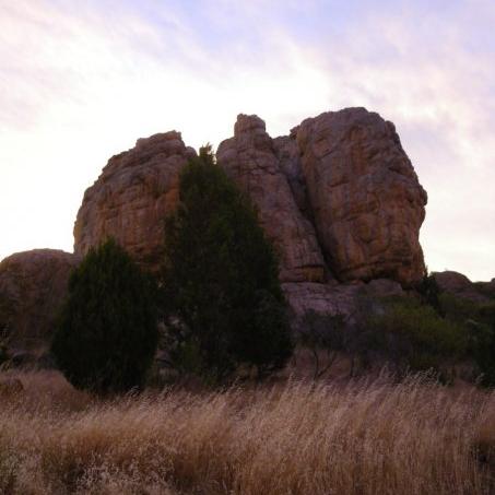Technology Adoption in Rural Australia -