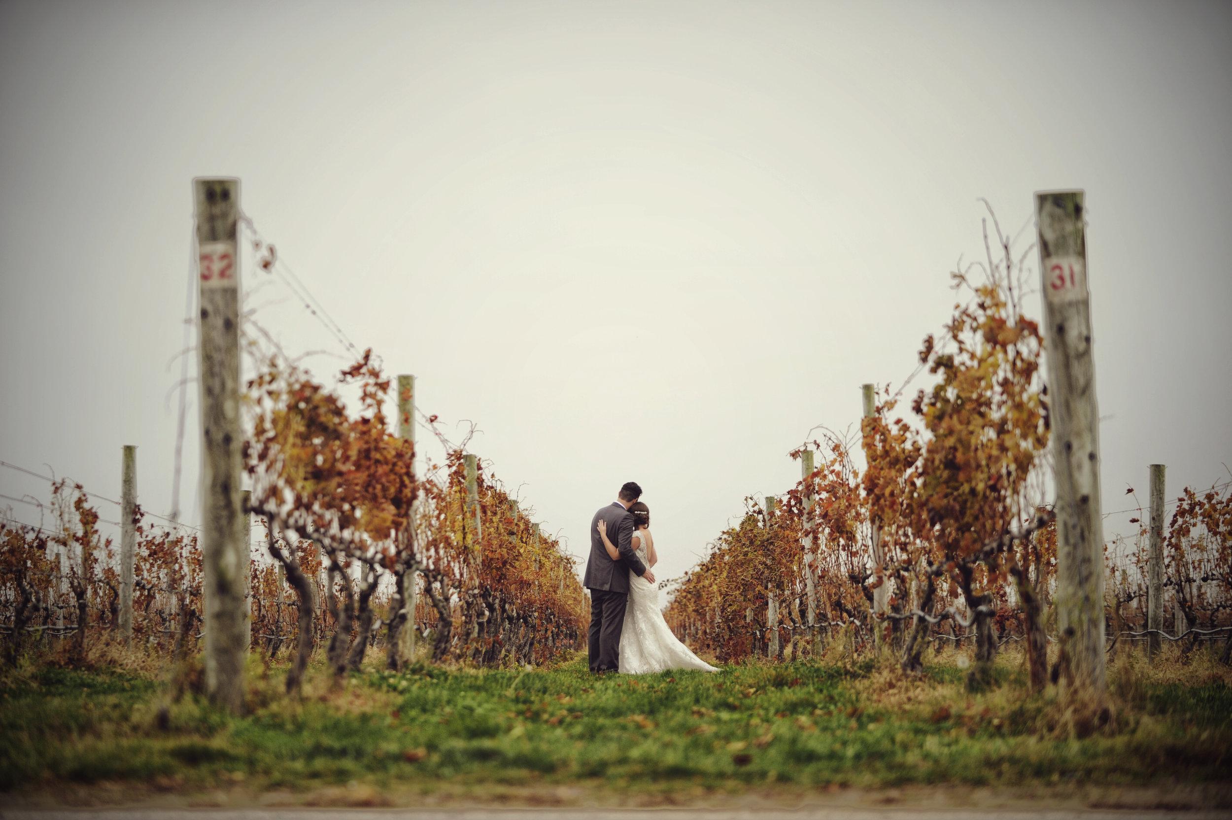 VINEYARD WEDDINGS -