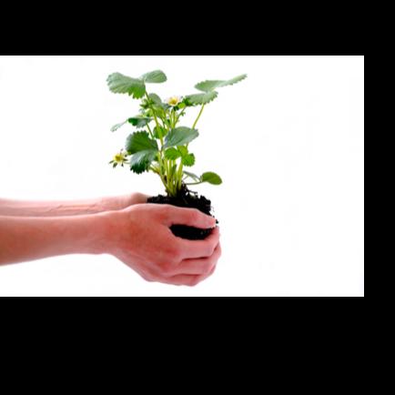Intabio Announces $2M Seed Financing - Sep 14, 2017, 05:00 ET