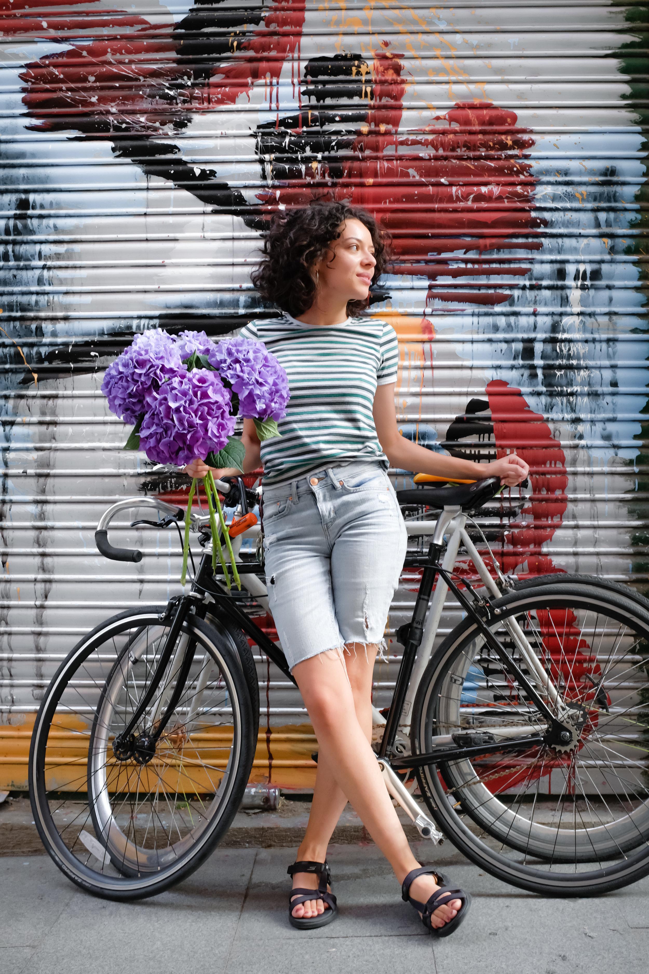 comprar hortensias en madrid centro.jpg