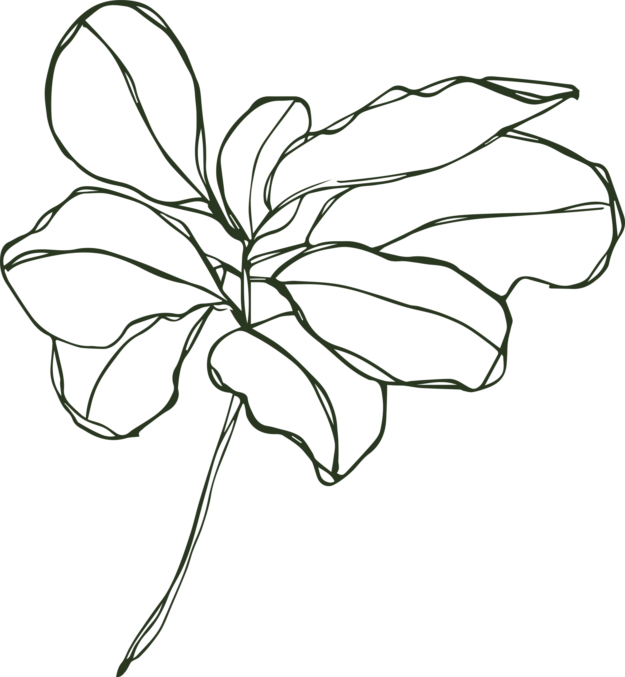 KMP_fig-green.png