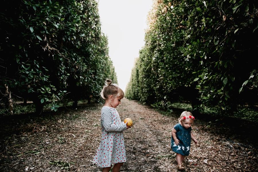 The Broguiere Girls // Orange Groves-Kandis Marino Photography©