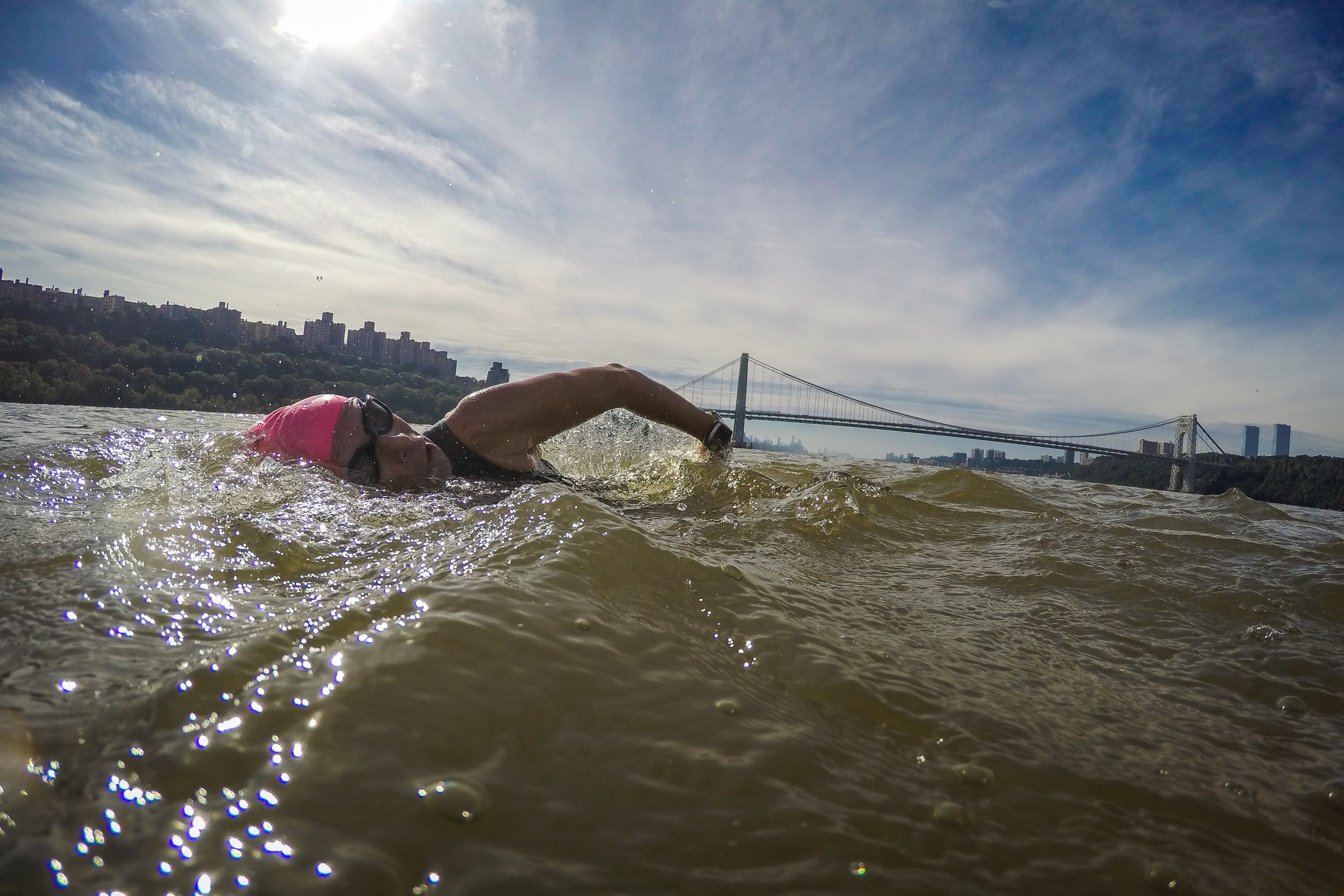 A swimmer in the Hudson River, the George Washington Bridge in the background.