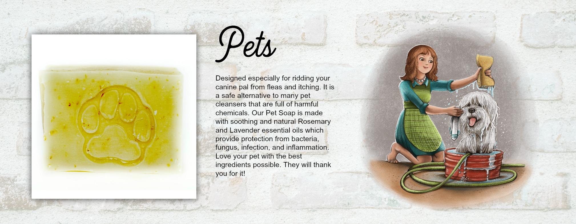Pet Banner  .jpg