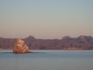 Baja, Un-cruise, welltraveled, wellness travel agency