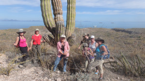 Jeri Donovan, Hiking, Un-Cruise Adventures, baja