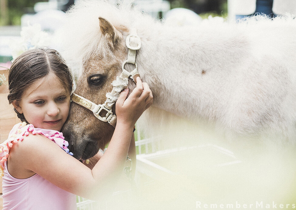 traveling farm birthday party little horse on the prairie los angeles