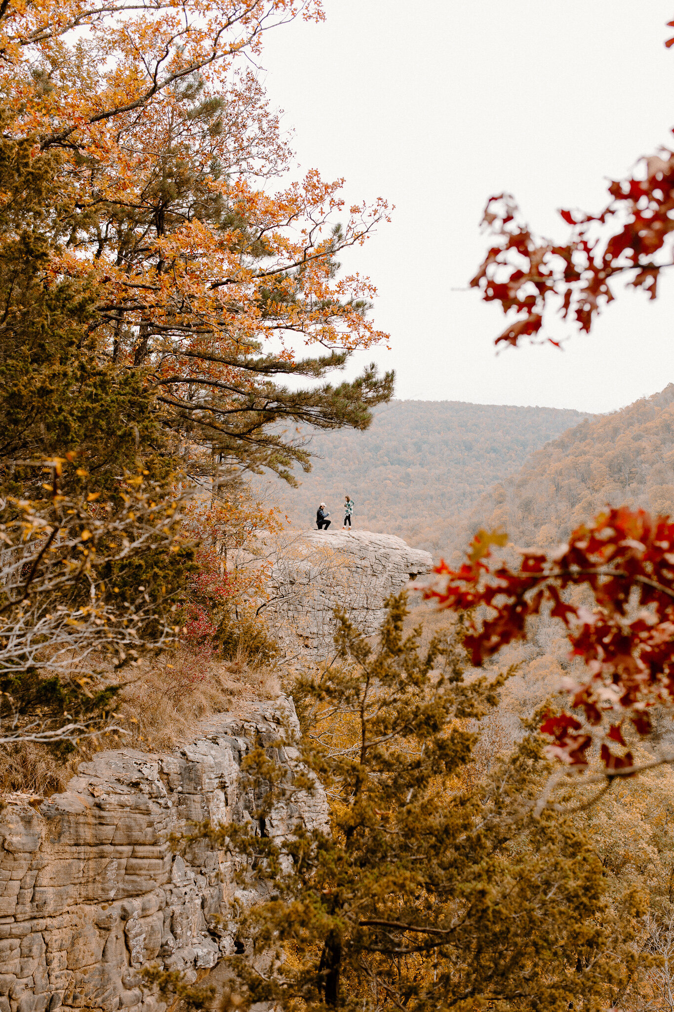 arkansas photographer hawksbill crag proposal