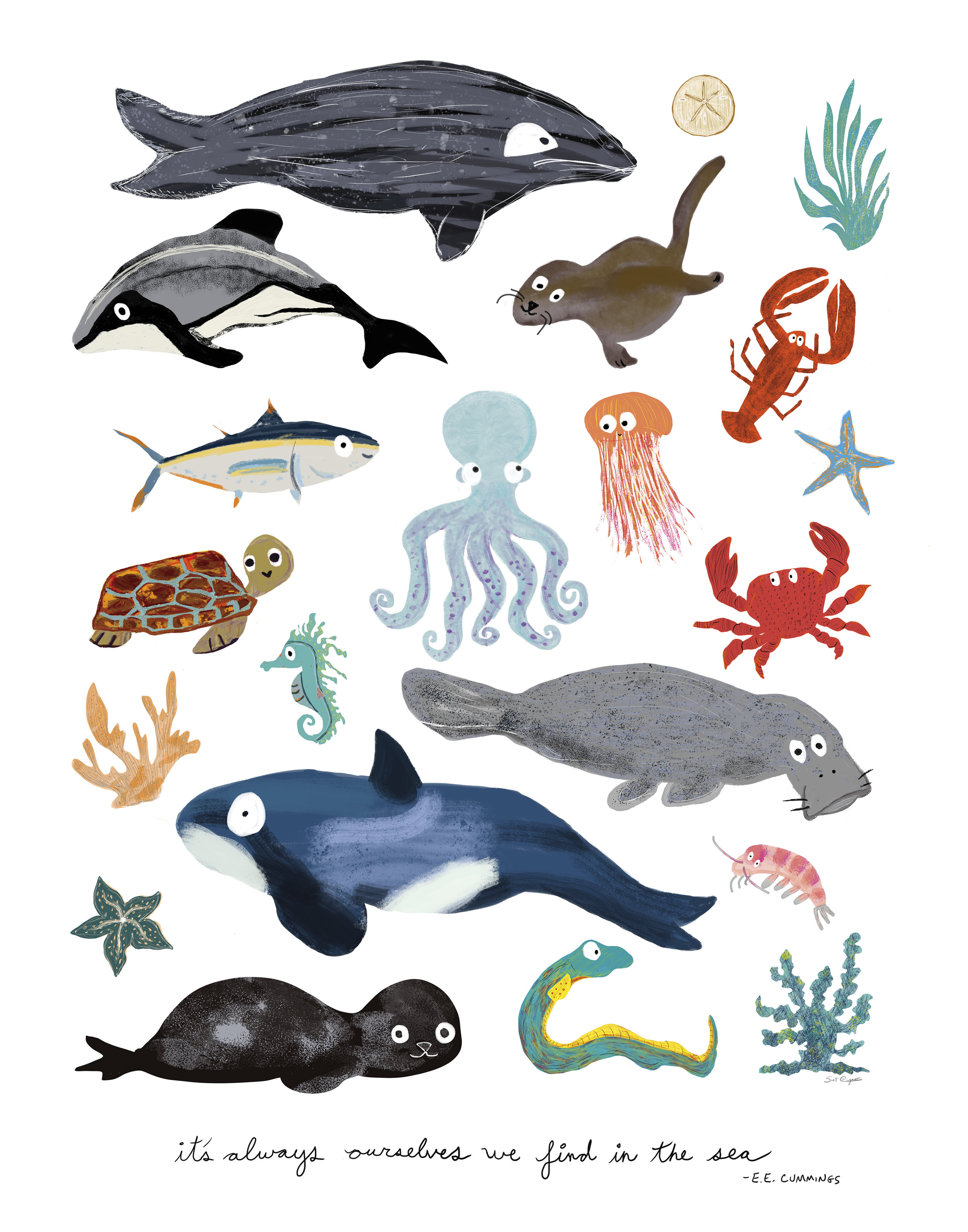 sea animal 11x14 single.jpg