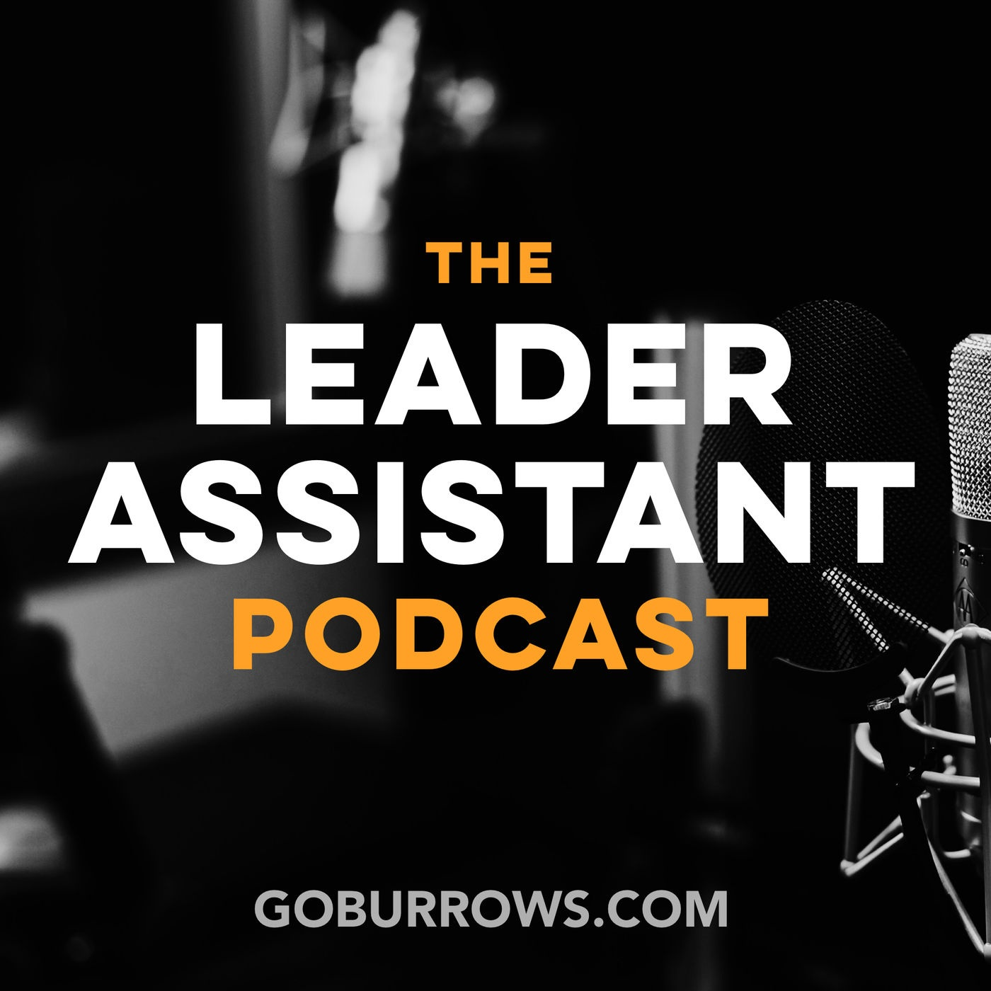 Jeremy Burrows was kind enough to interview me on his Leader Assistant podcast for CEOs and their world-changing assistants.